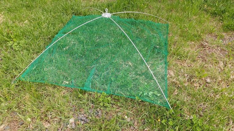 Green umbrella net in the grass