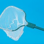 Dip net with green handle