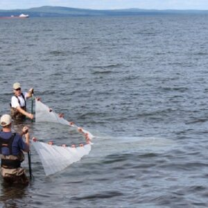 Smelt Bag Seine on Lake Superior